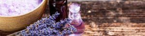 Lavender Oils and Plants