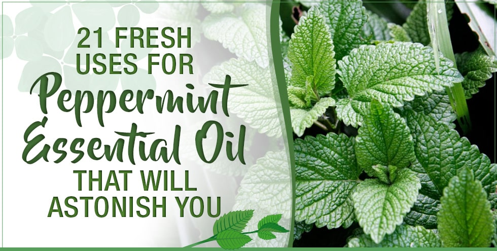 21 Fresh Uses For Peppermint Essential Oil That Will