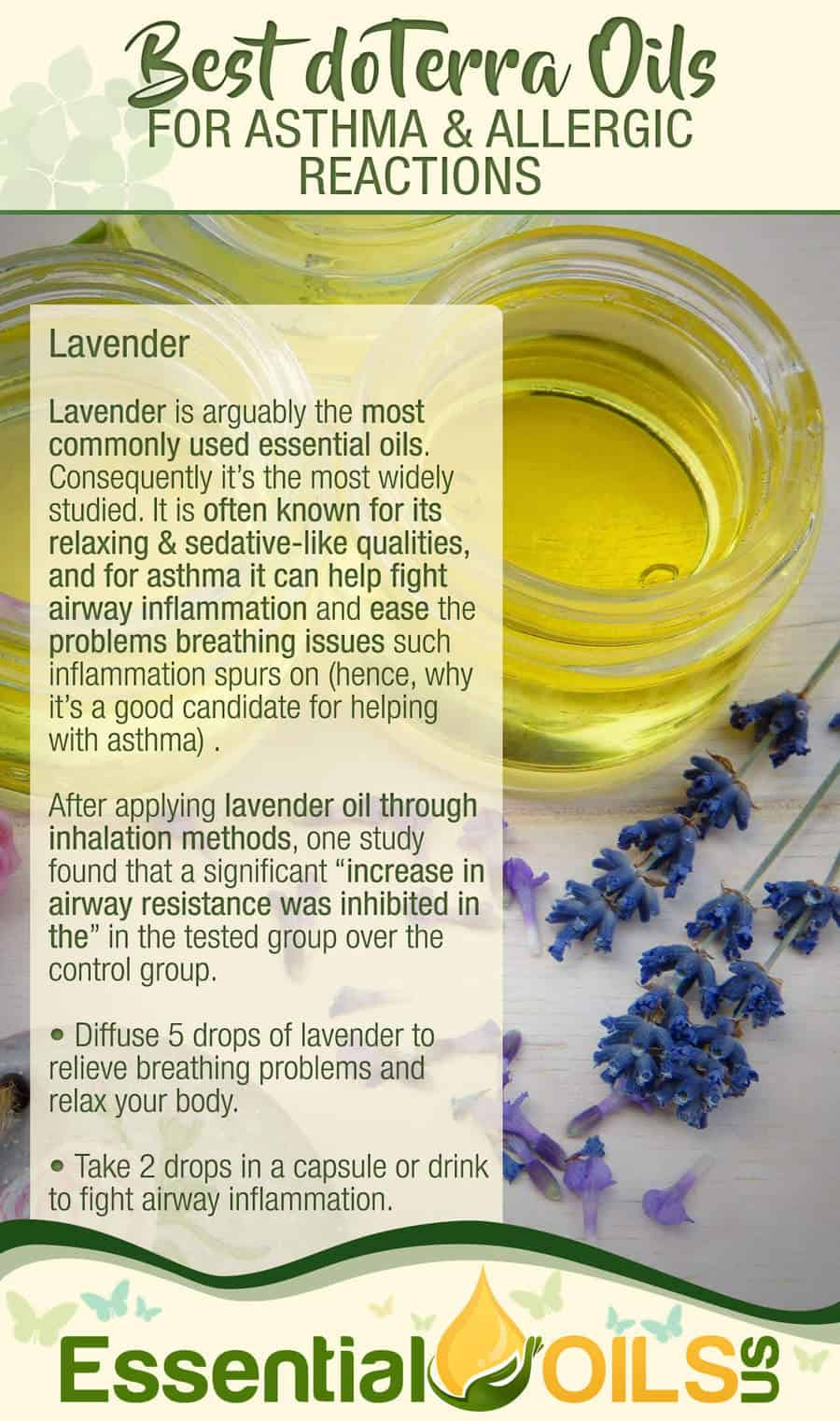 doTerra Essential Oils For Asthma And Allergy - Lavender