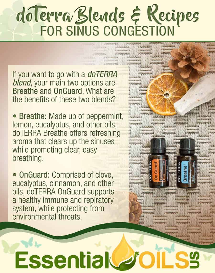 Main doTerra Oils For Colds And Sinus