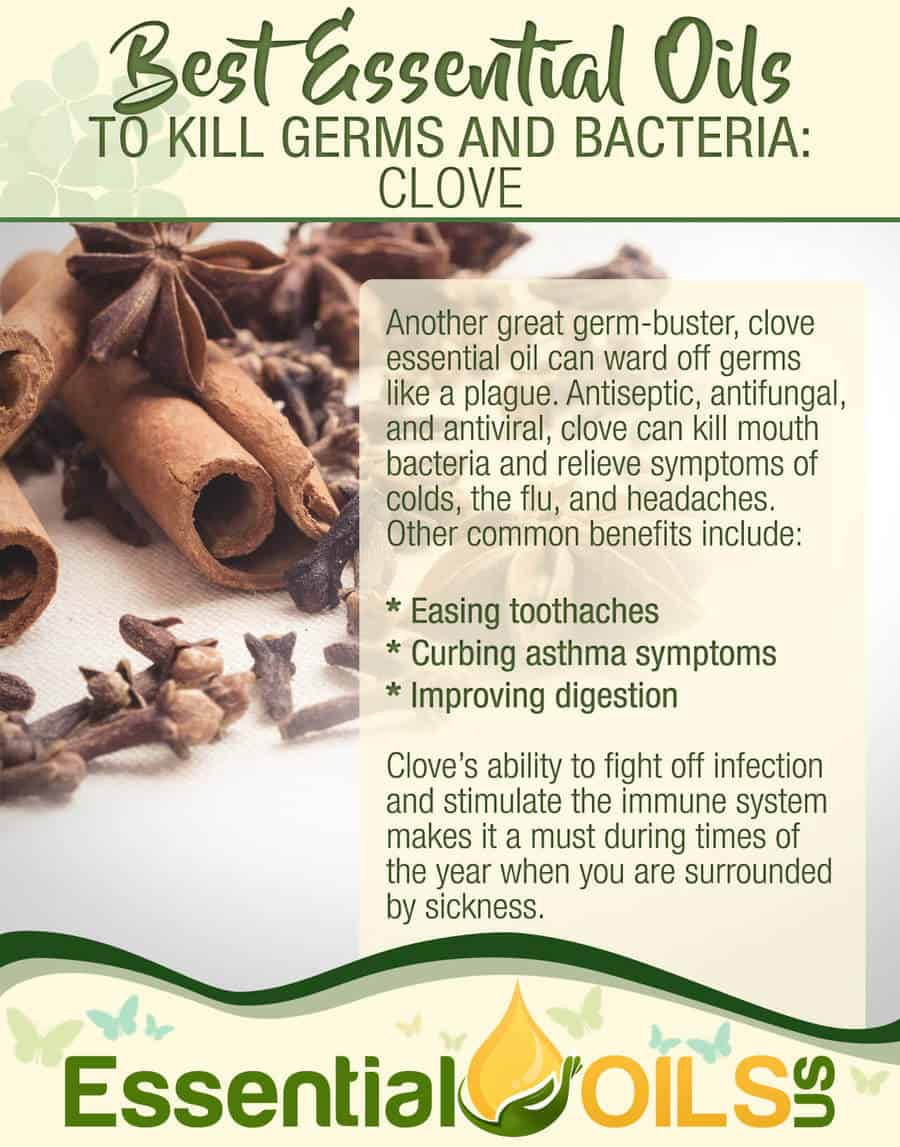 Essential Oils For Germs And Bacteria - Clove