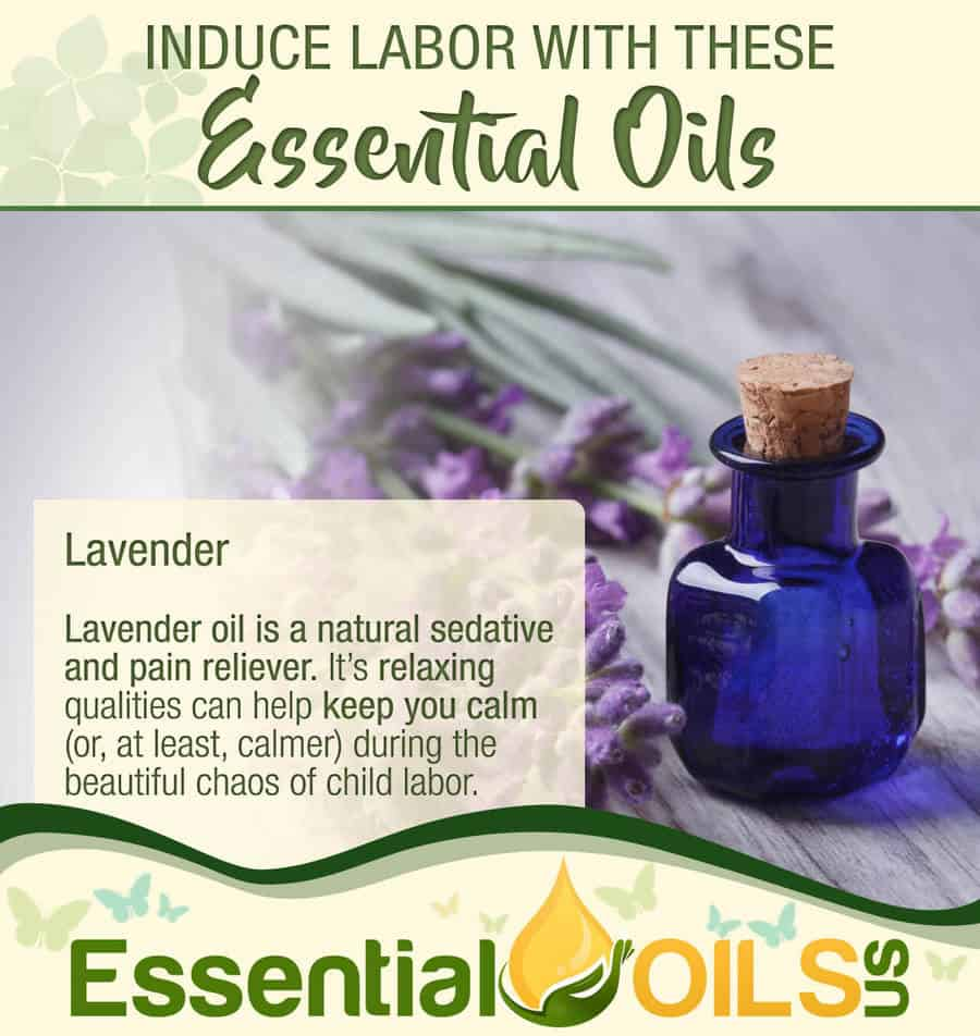 Induce Labor With Essential Oils - Lavender