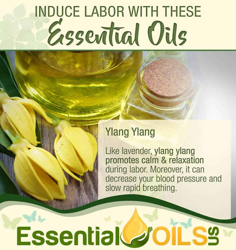 Induce Labor With Essential Oils - Ylang Ylang
