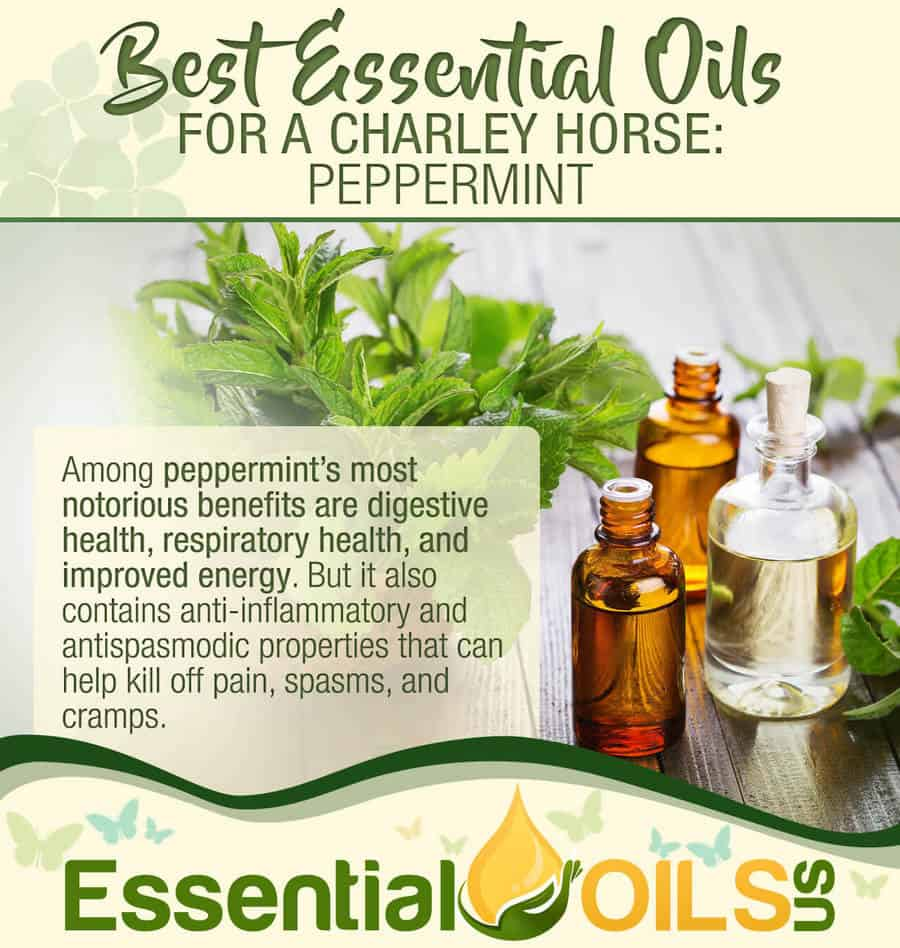 Essential Oils For Charley Horses - Peppermint
