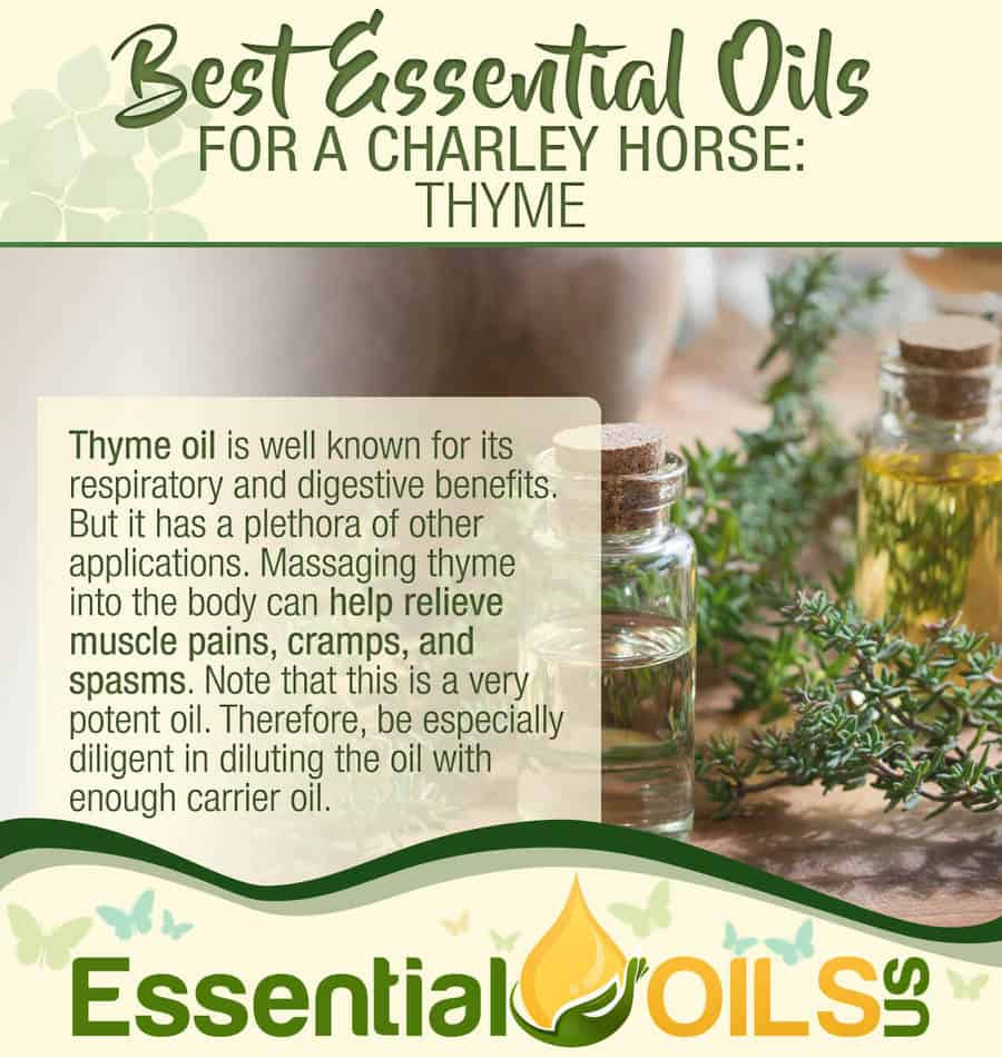 Essential Oils For Charley Horses - Thyme