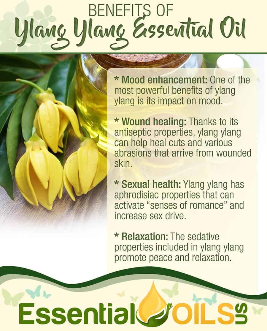 5 Ylang Ylang Diffuser Blends and Benefits