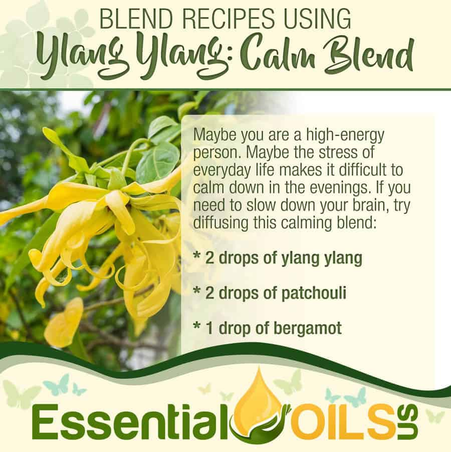 Ylang Ylang Recipe - Calm Blend