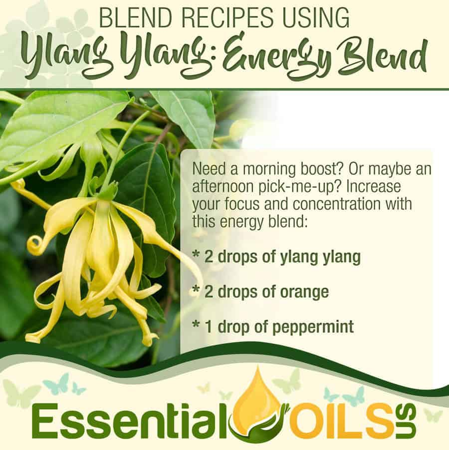 Ylang Ylang Recipe - Energy Blend