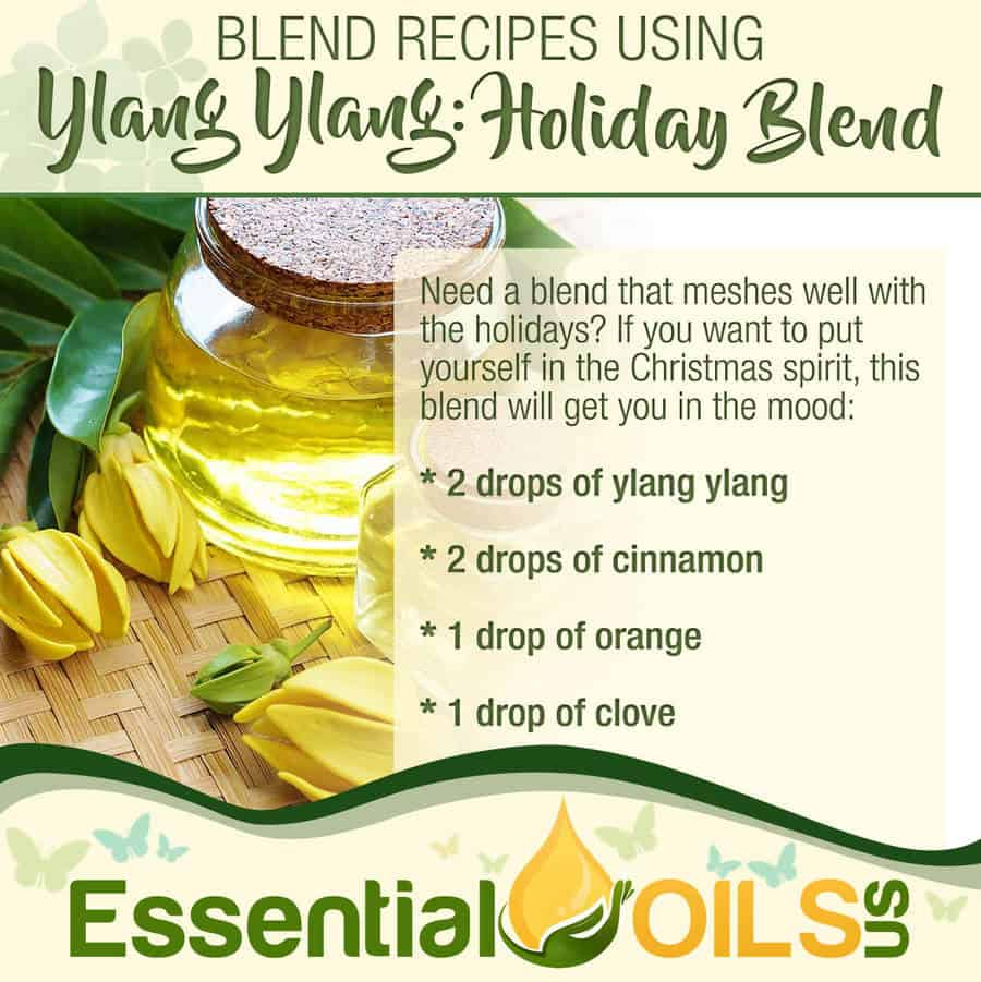 Ylang Ylang Recipe - Holiday Blend