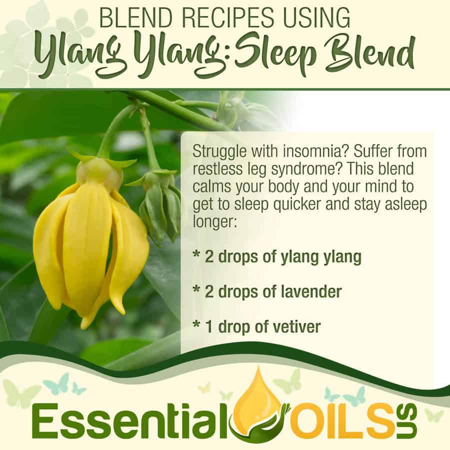Ylang Ylang Recipe - Sleep Blend